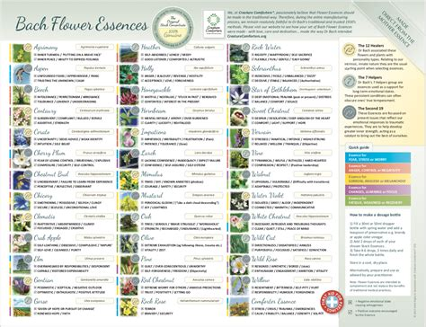 Small Bach Flower Essence Chart. Laminated poster leaflet