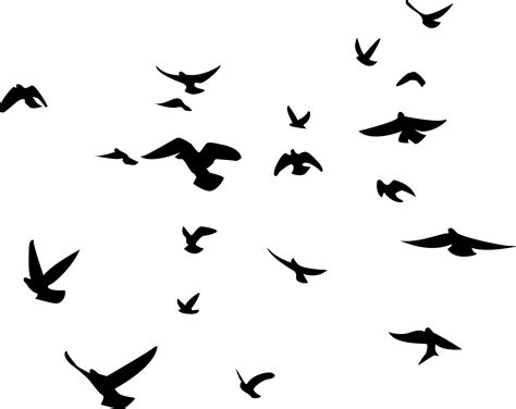Soaring Birds Silhouette Wall Decal Set