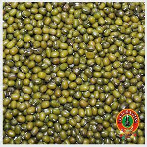 Soja Verde en Grano / Judía Mungo   La Salmantina