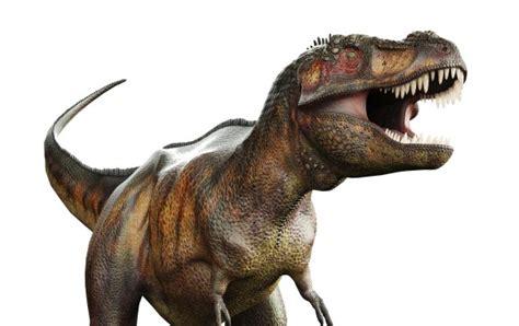 ¿Son dinosaurios todos los dinosaurios?