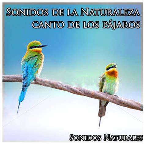 Sonidos de la Naturaleza: Canto de los Pájaros by Sonidos ...