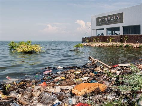 Sources and Causes of Water Pollution That Affect Our ...