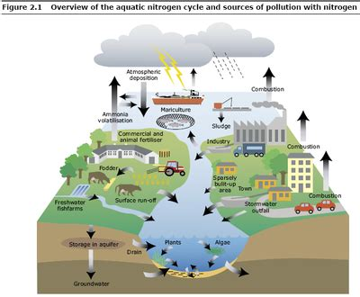 sources of pollution — European Environment Agency