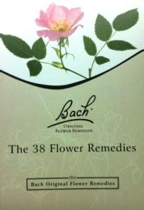 Southern Herb :: Our Products :: Flower Essences :: Bach ...