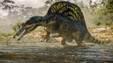 Spinosaurus   Dinosaurs Image  28701081    Fanpop