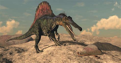 Spinosaurus Facts: Extinct Animals of the World ...