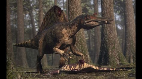 Spinosaurus vs Carcharodontosaurus | The balance of power ...
