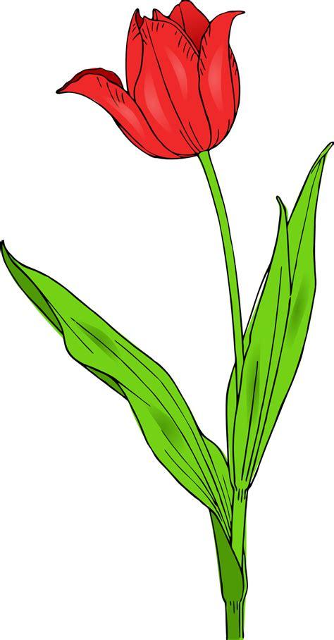 Spring Flowers Clip Art Free Printable   Clipart Panda ...