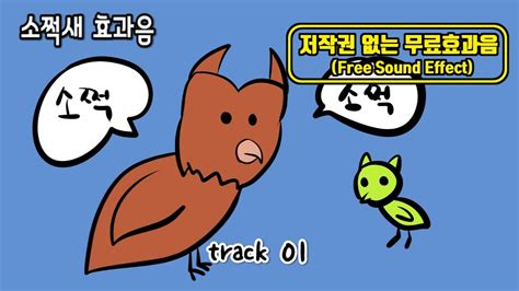 무료 효과음 소쩍새 소리 pack  Free sound effect pack Scops owl sound ...