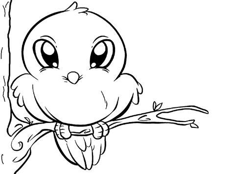 Раскраски птицы для мальчиков