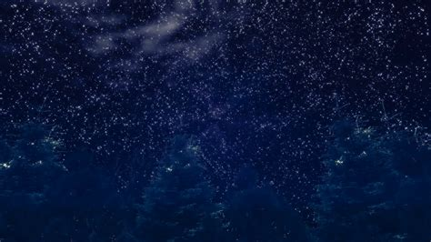 Starry night sky over the dark forest Stock Video Footage ...