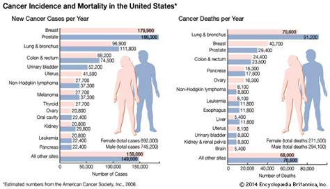 stomach cancer   pathology   Britannica.com