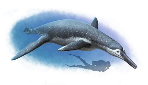 Strange  spirit of the water  reptile from dinosaur age ...