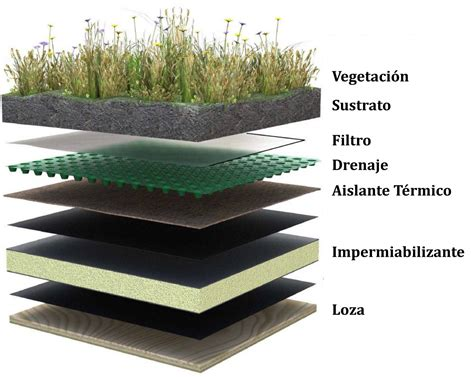 Suit Muebles: Green Roof  Techo Verde , Parte II