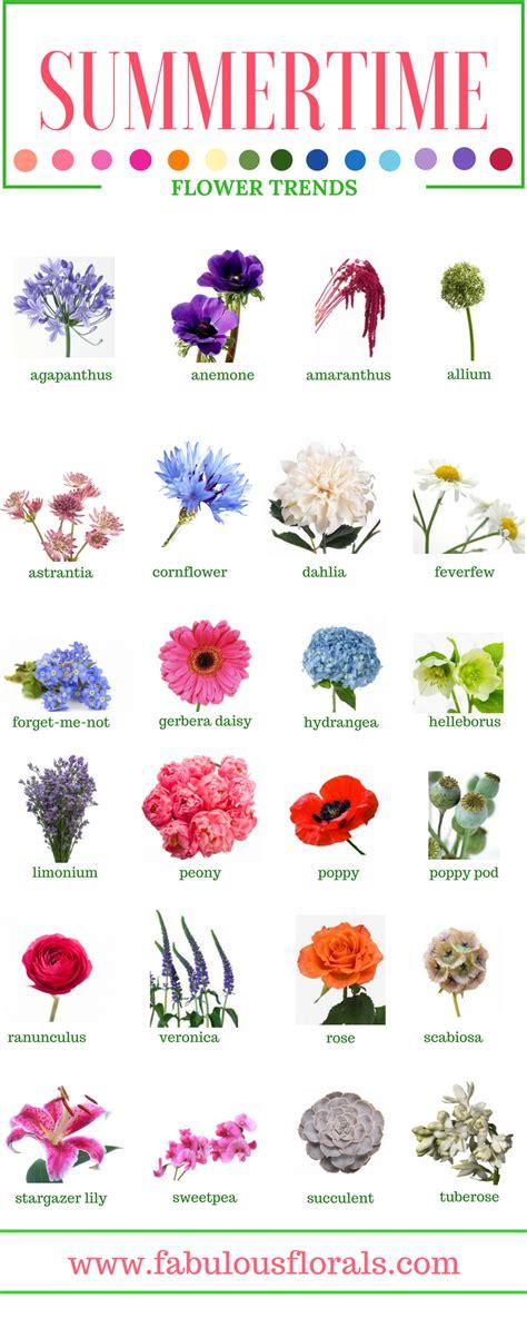SUMMER FLOWERS   Names of the best Summer flowers.2017 ...