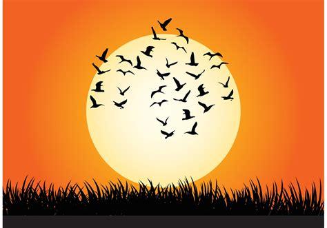 Sunset Vector Illustration   Download Free Vectors ...