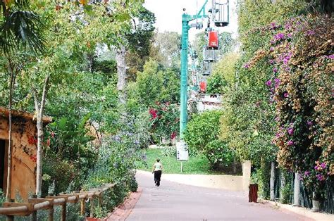 Superb Zoo!!   Picture of Lisbon, Lisbon District ...