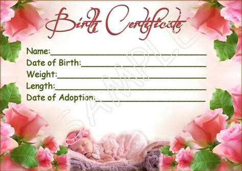 SWEET ROSES Reborn Baby Doll Birth Certificate Instant | Etsy