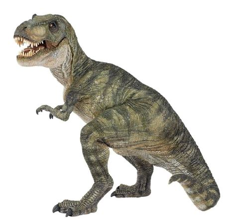 T Rex Dinosaurs History | Dinosaurs Pictures and Facts