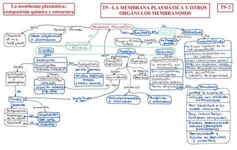 T09 La membrana plasmática y otros orgánulos membranosos ...