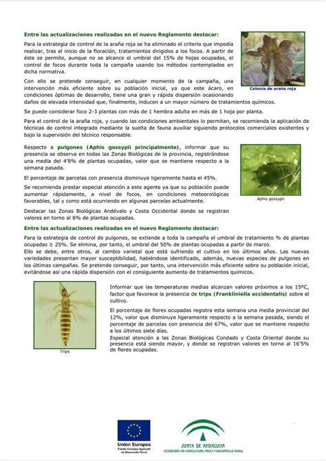 Tablón de informaciones relativas a plagas, enfermedades y ...