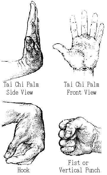 Tai Ji Quan Hand Positions – Phoenix Dragon Kung Fu ...