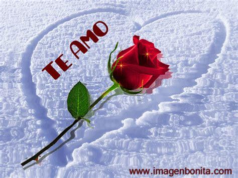 Tarjetas animadas con rosas y frases cortas de TE AMO