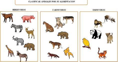 TATIANA RODRIGUEZ: LOS ANIMALES