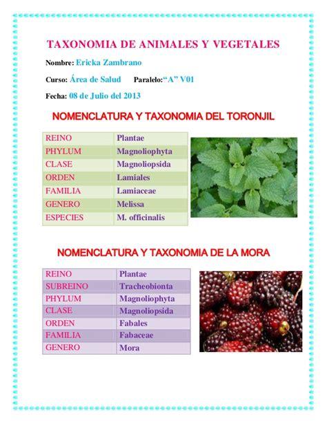 Taxonomia de animales y vegetales