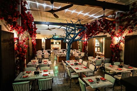 Te Deseo Opens in Dallas with Latin Music and Cuisine ...