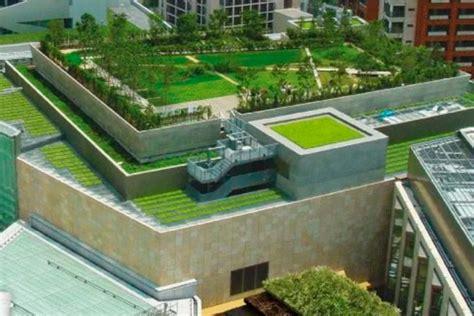 techo verde 3 – TELPOR