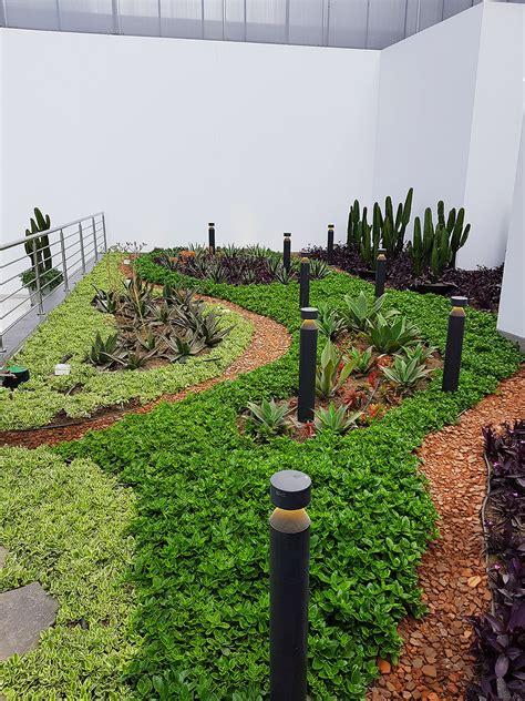 Techos verdes: paisajismo arquitectónico