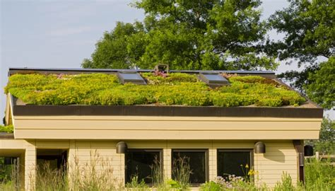 Techos verdes: una tecnología en crecimiento | Revista Cabal