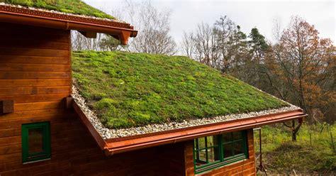 Techos verdes vivos: definición, beneficios y cómo ...