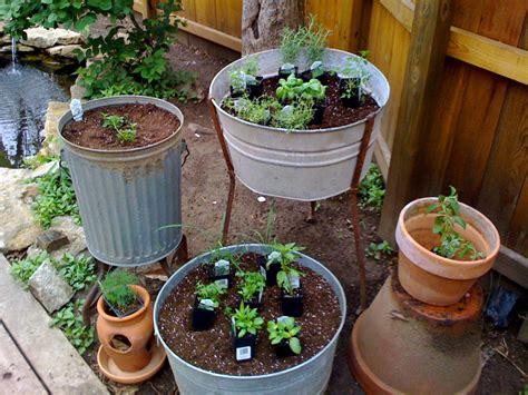Técnicas para Cultivar Hierbas Aromáticas en Casa   Vía ...