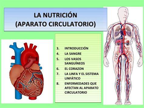 Tema 4 2 Aparato Circulatorio