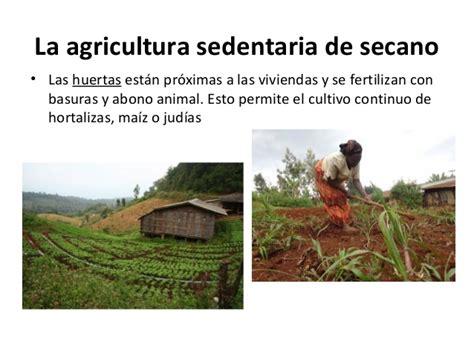 Tema 6 4 Los paisajes agrarios