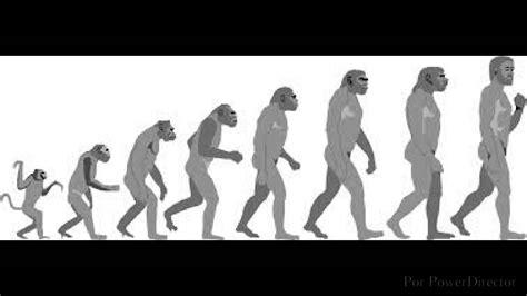 teoría de la evolución de Charles Darwin   YouTube