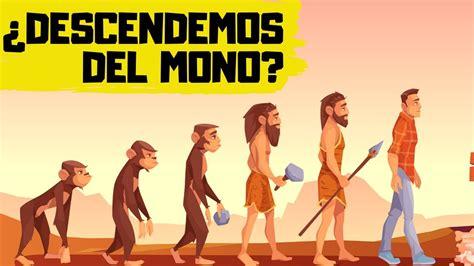 TEORÍA de la EVOLUCIÓN de DARWIN | EXPLICACIÓN RÁPIDA y ...