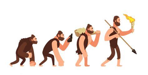 Teoría de la evolución humana. etapas de desarrollo del ...