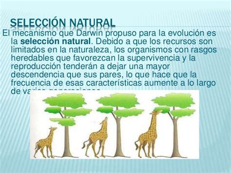 Teoría de la evolución por selección natural