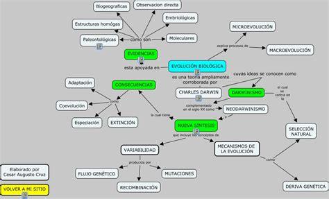 Teoría de la Evolución   Qué es la Teoría de la Evolución