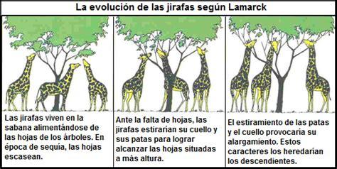Teorías de la Evolución Biológica :: Bio Evolutio