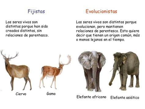 Teorías de la Evolución timeline | Timetoast timelines
