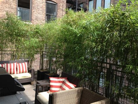 Terraza   50 ideas increíbles para decorarla con plantas.