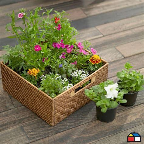 Terrazas | Garden planters, Plants, Garden