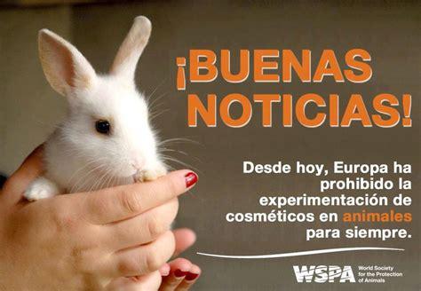 Testado en animales, lo que muchas personas ignoran ...