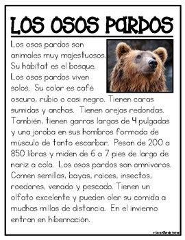 Textos Informativos  Animales del Bosque by La Colita de ...