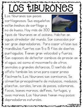 Textos Informativos  Animales del Océano by La Colita de ...
