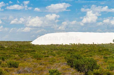 Textura De La Arena Del Desierto Australiano Foto de ...